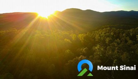 Mount Sinai Wellness Center