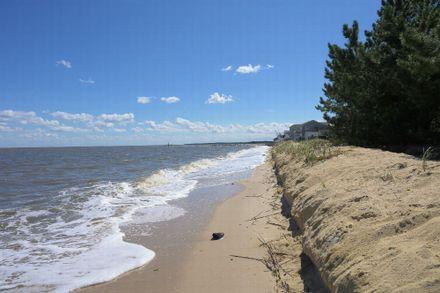 Banyan Delaware